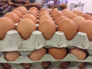 Mindig friss házi tojás